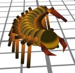centipede1